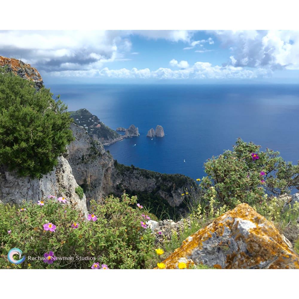 Ana Capri by Rachael Newman