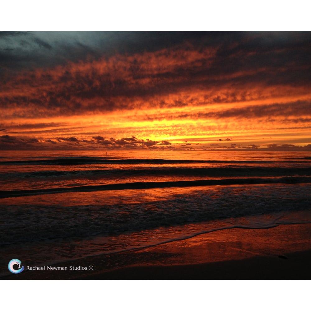 Fire Sky by Rachael Newman