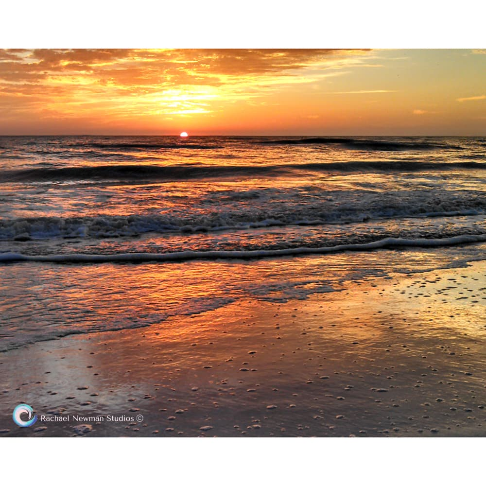 Golden Waves by Rachael Newman
