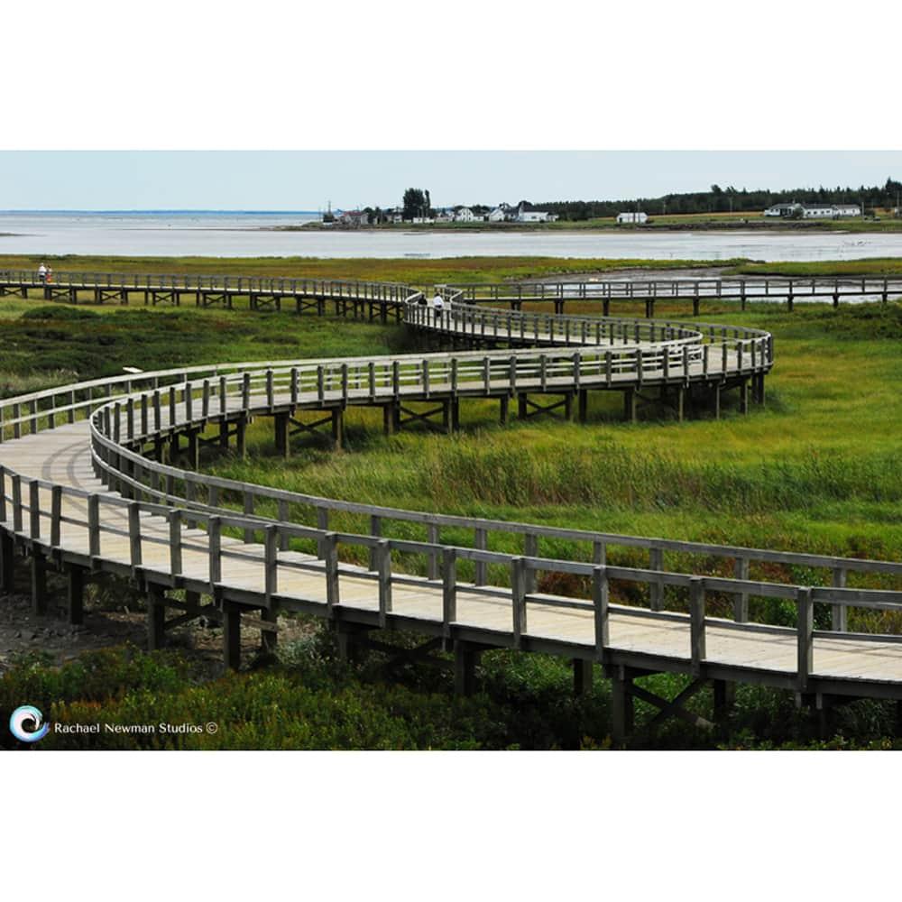 Serpentine Boardwalk by Rachael Newman
